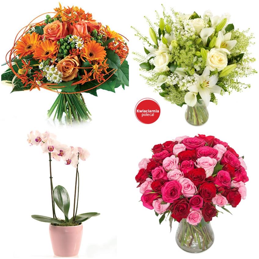 kwiaty euroflorist